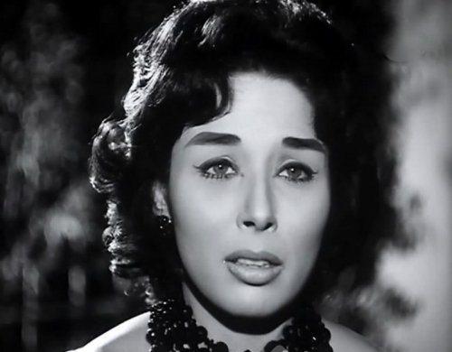 Lobna Abdel Aziz net worth
