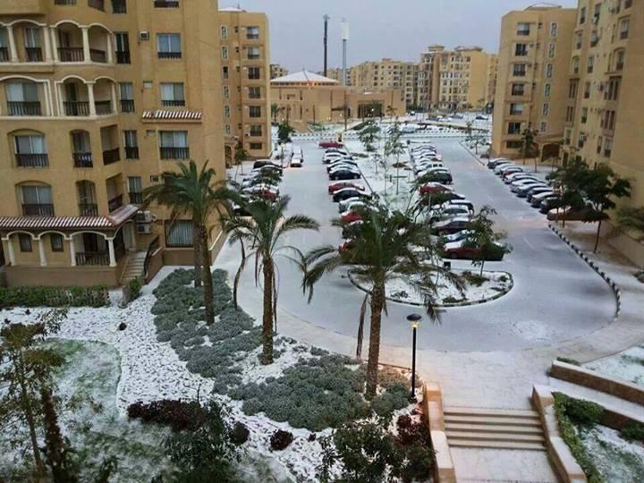 Cairo (Sabrina Hemaky)