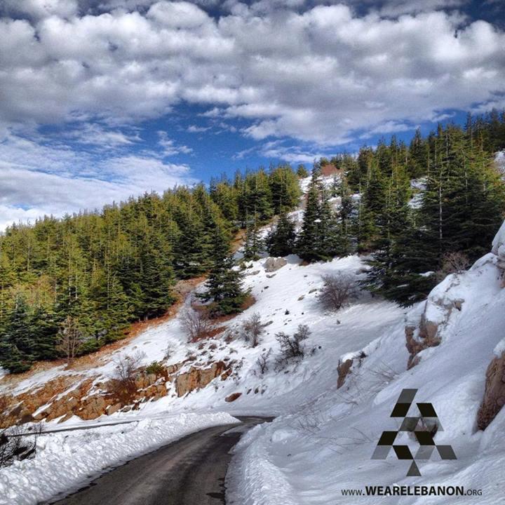 Barouk Cedars (Via)