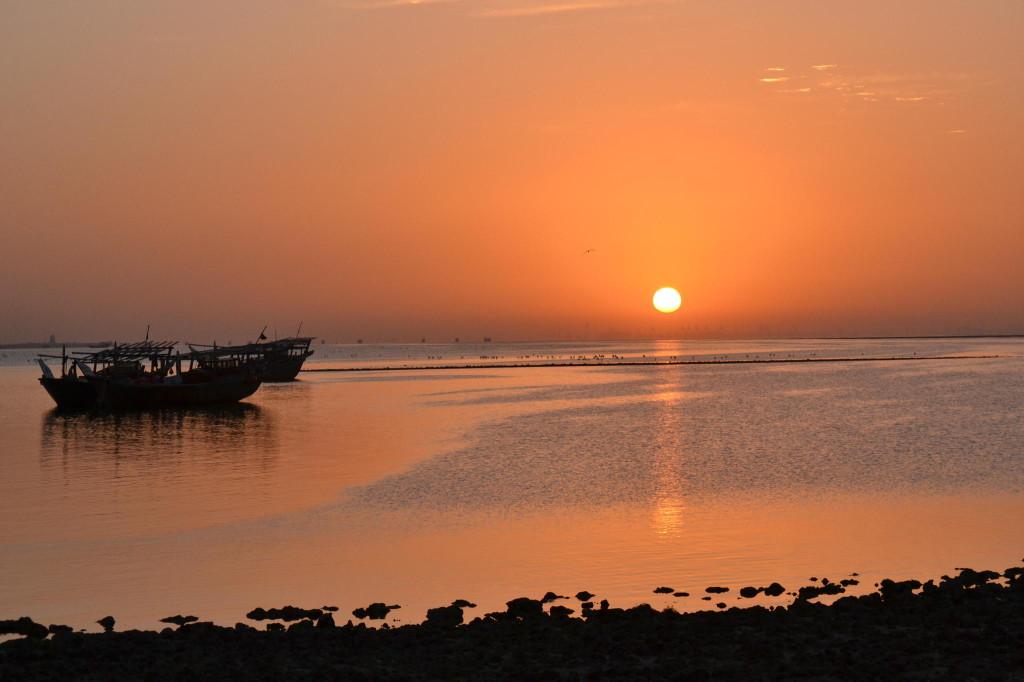 Gulf of Saudi Arabia (Ali Areda Via)