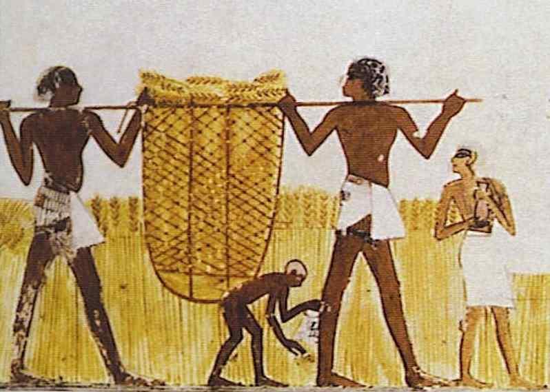 Egyptraveluxe Tours -Egypt day tours and Egypt Travel