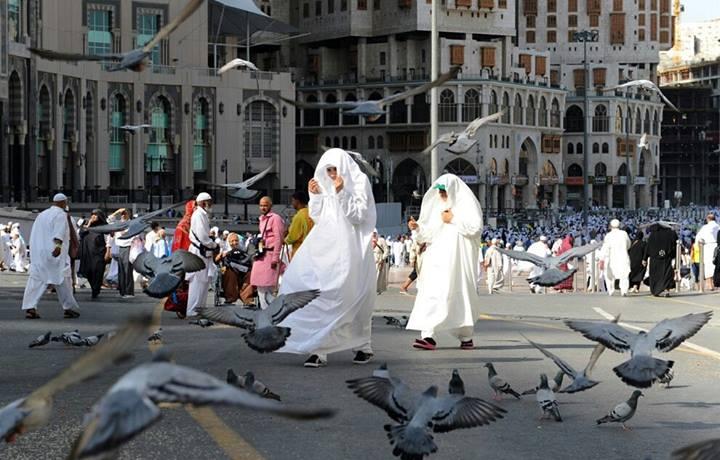 Jeddah (Via)
