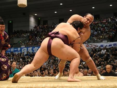 Consider, that arm championship midget pro sumo wrestling where
