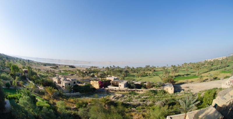 (Mahmoud Menem)