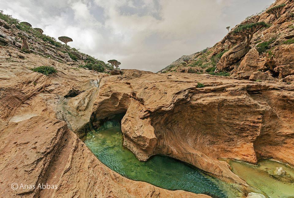 Socotra Island (Anaas Abas/Via)