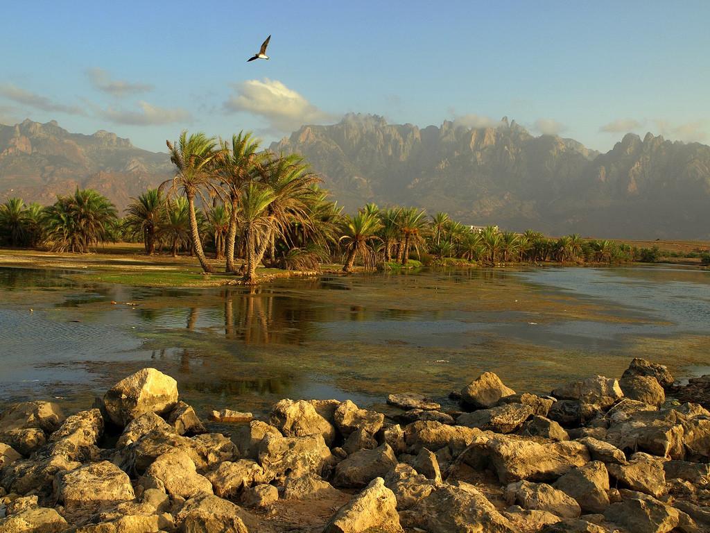 Socotra Island (Martin Sojka/flickr)