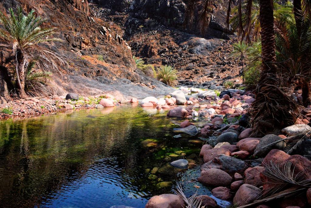 Wadi on Socotra Island (Rod Waddington/flickr)