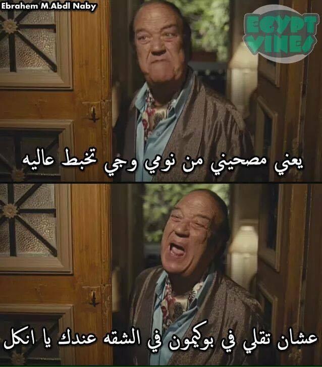 13695826_10153871879093460_1616080693_n literally just 29 hilarious egyptian pokémon go memes
