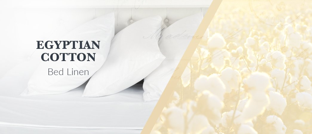 egyptian cotton is officially making a comeback